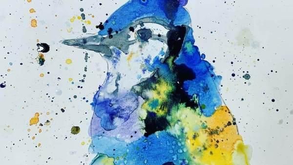 Blue Jay  By Aspen Clayton