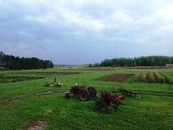 Fields Middle