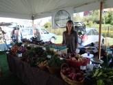 Harvest Fest Booth C