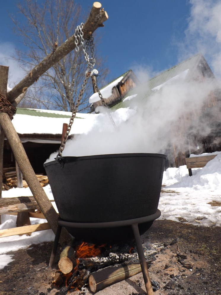 Early on, sap was boiled outside in large kettles that were located close to the sugar bush. Here visiting students get to experience the labor that went into making syrup using this technique. Using the wooden lever, students must swing the large kettle (which weighs nearly 150 lbs!) off the fire and lower it to the ground.
