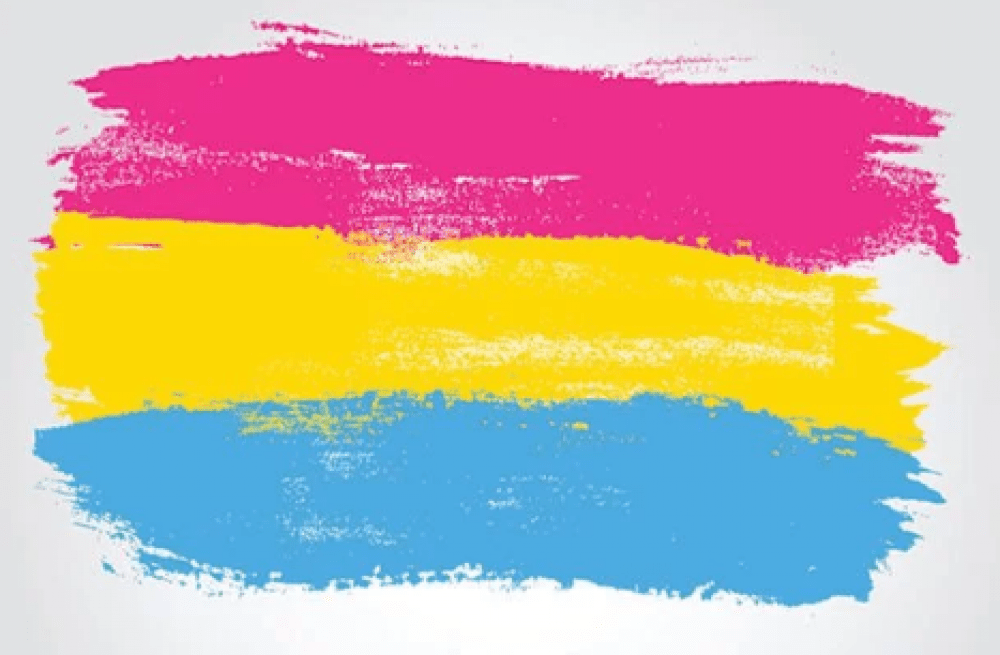 Pansexual Awareness Newsletter August 2019 Stonewall Japan
