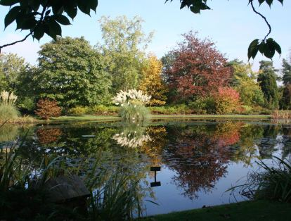 Burnby Hall Gardens01
