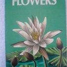 Flowers – Golden Guide