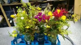 Poland Family Farm has flowers.