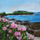 Beach Rose ©Katy Allgeyer