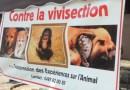 STAND CONTRE LA VIVISECTION – samedi 6 août 2016 – Liège
