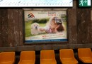 Le 1er mai 2018, la campagne d'affichage de S.E.A. dans le métro bruxellois commence!