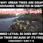 Safe The Trees #Stop5G