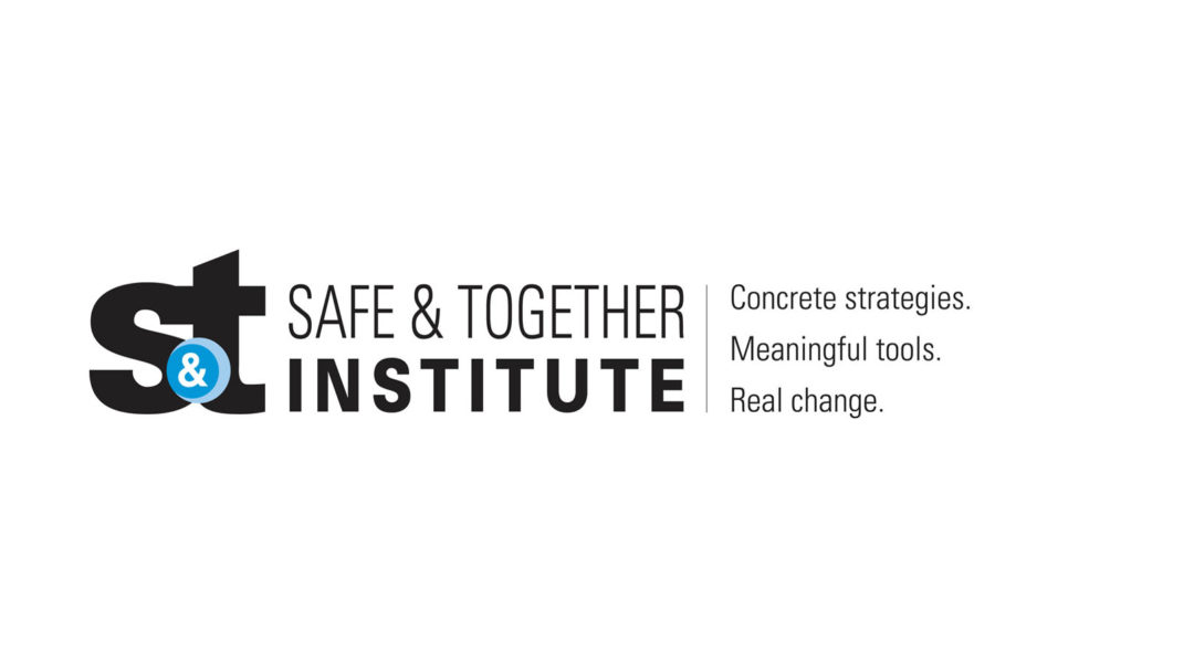 Safe and Together Institute