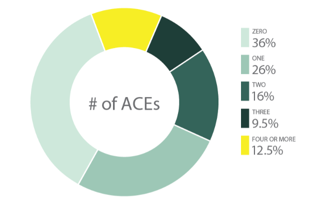 Adverse Childhood Experience Abuse ACEs