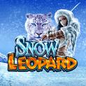 Snow Leopard Slot