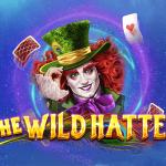 the wild hatter slot logo