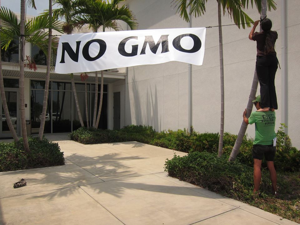 Letter to the USDA: Will you work for the biotech industry or the public interest?
