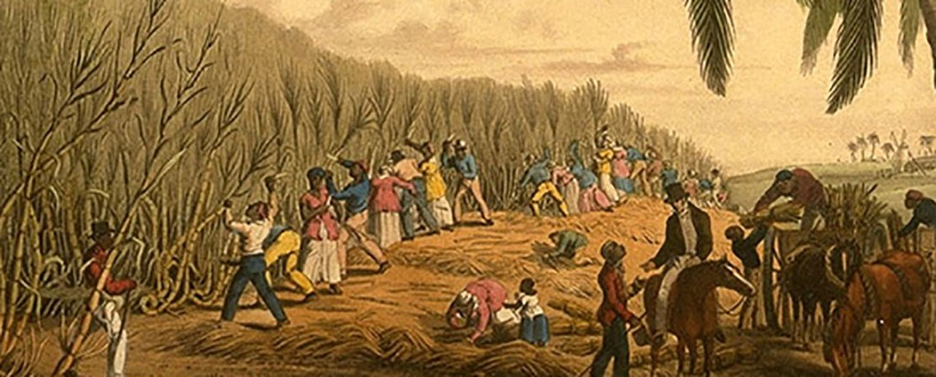 A Legacy of Colonial Power, a Blueprint For Environmental Racism