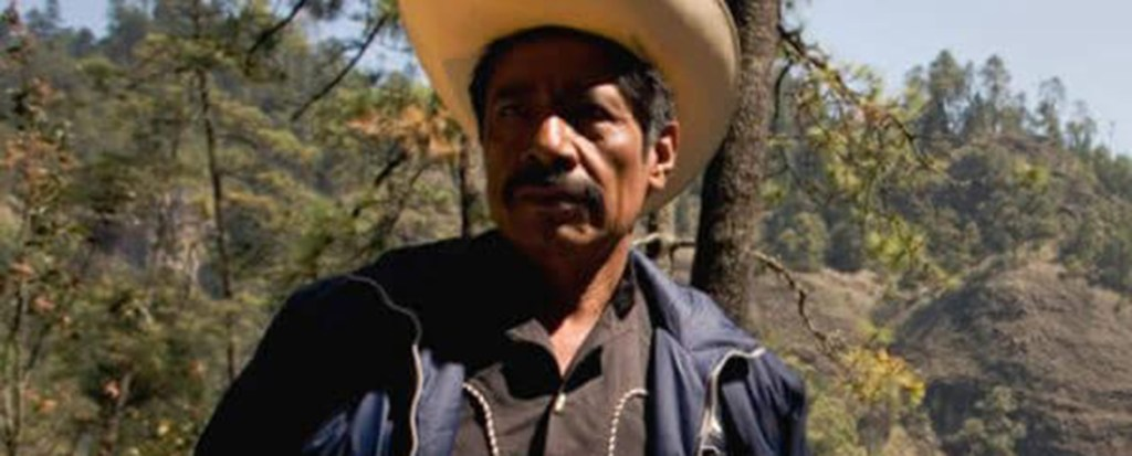 Indigenous Forest Defender Illegally Jailed in Mexico