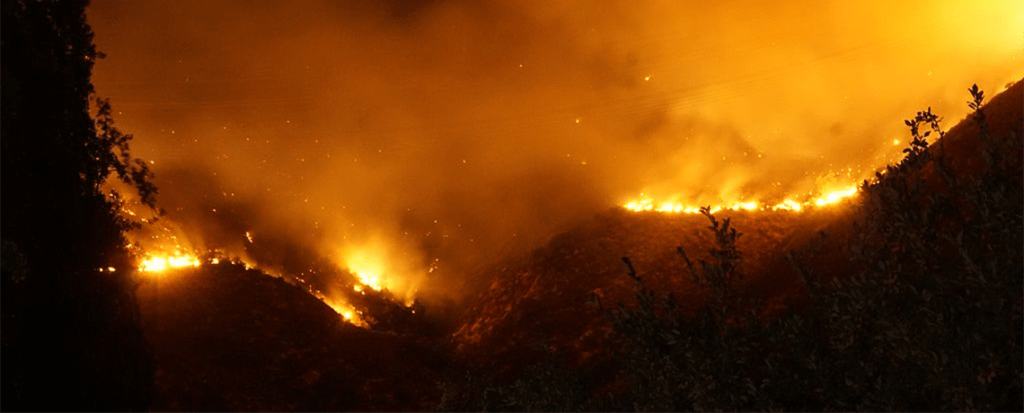 Research Determines Reasons for Massive Fires in South-Central Chile