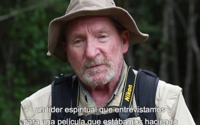 Video: Orin Langelle speaks out against GE trees in Chile (Entrevista destacada Orin Langelle: contra los árboles Transgénicos en Chile)