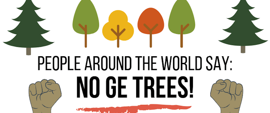 NY Times Magazine Promotes GE Trees - We Set the Record Straight