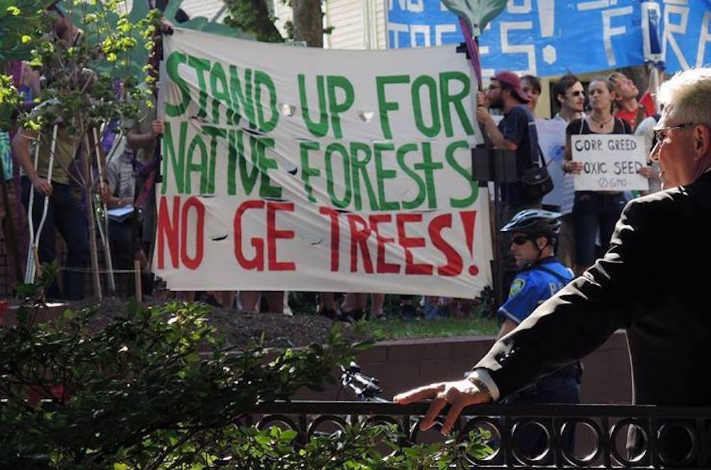 Release: Diverse Groups Unite In Opposition To GE Tree Plan By SUNY-ESF