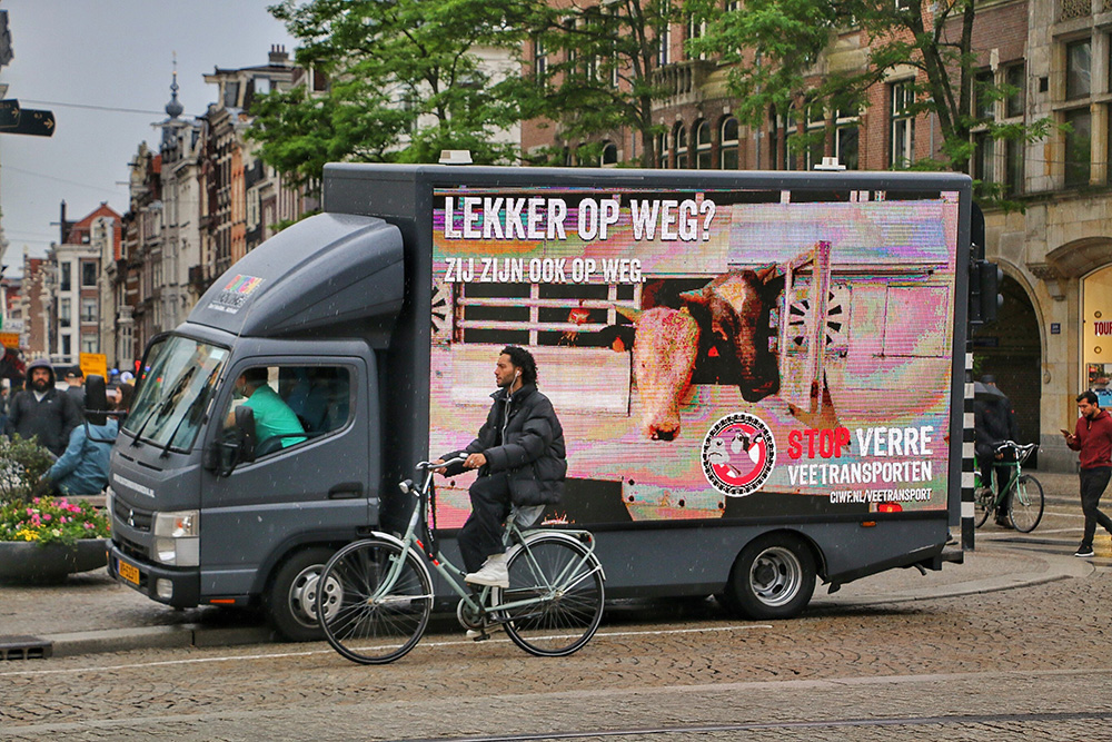 Stop Live Transport Day of Action The Netherlands