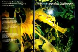Biodiversity Sign-Aquarium