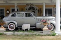 The Antique Car