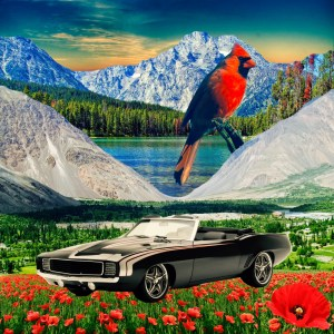 cardinal and muscle car with poppies and mountains