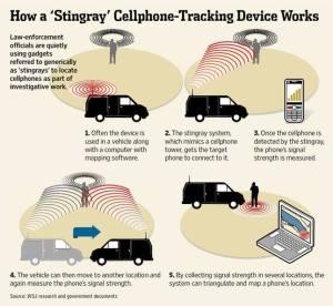 how-a-stingray-works