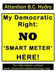 my-democratic-right