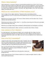 Cats - Medical FeLV