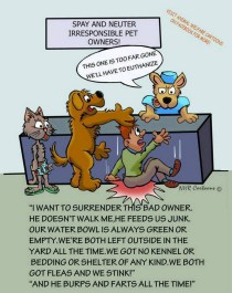 Homeless pets - Kill shelters reasons 2