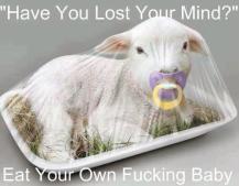Factory farming - sheep lamb 03