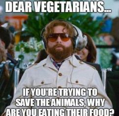 Message - GMOs vegetarians why eat animals food