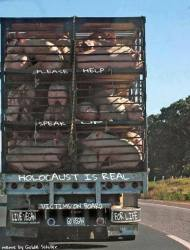 Message - Holocaust is real pigs on lorry help