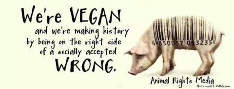 Vegan - bar code pig