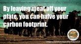 Vegan - carbon footprint halved