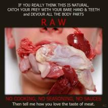 Vegan - truth meat 02