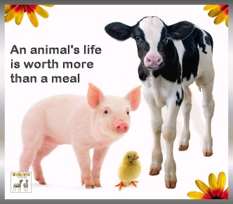 Vegan - truth reasons life worth more than a meal