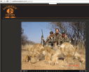 Lions - Poster for canned hunting 20
