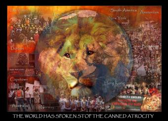 Lions - Trophy hunting 12