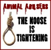 Message - Abusers noose is tightening