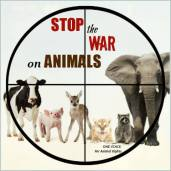 Message - Abusers stop the war on animals