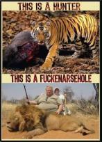 Trophy hunters - Hunter or asshole