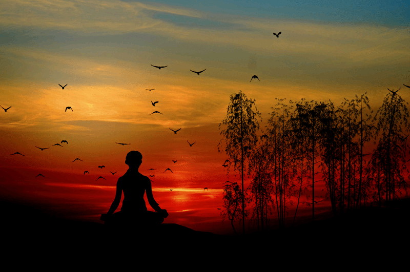 A woman meditating at sunset near trees with birds flying. Meditation: 10 minutes to control stress.