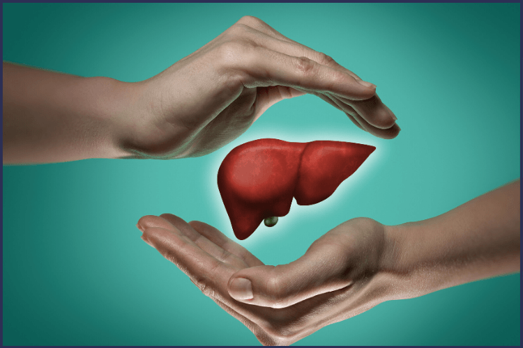 Two hands cupping a liver on a green background. 9 Helpful Tips for When You Start the Liver Shrinking Diet | It Gets Easier | Featured Image