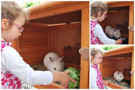 2011-06-18 Trois petits zous6