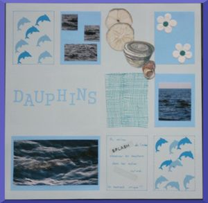 120506_dauphins