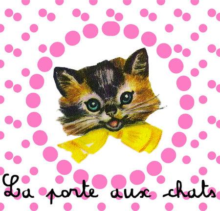 banniere_chat