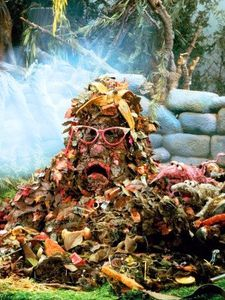Trash_heap_1