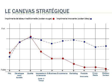 Canevas stratégique_océan bleu